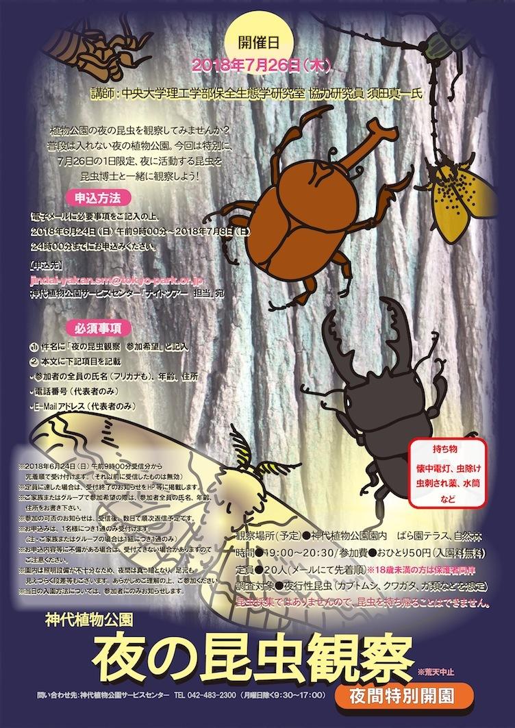 神代植物公園 夏休み子どもイベント用ポスター『夜の昆虫観察』『大温室ナイトツアー』