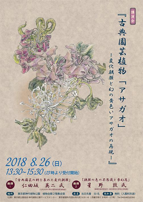 講演会「古典園芸植物アサガオ_変化アサガオと幻の黄色いアサガオの再現」ポスター