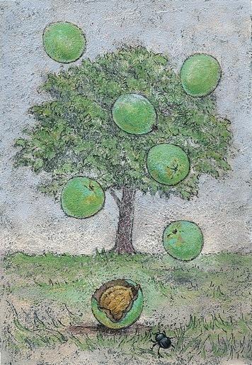 クルミの木 (オリジナル作品)