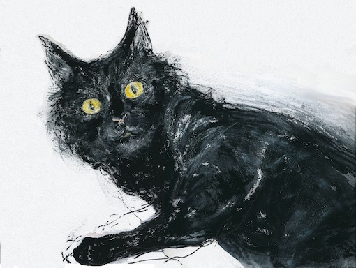 黒猫 (装画コンペ 出品作品)